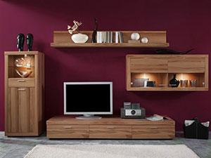 мебель для гостинной сделать на заказ в Пензе фото